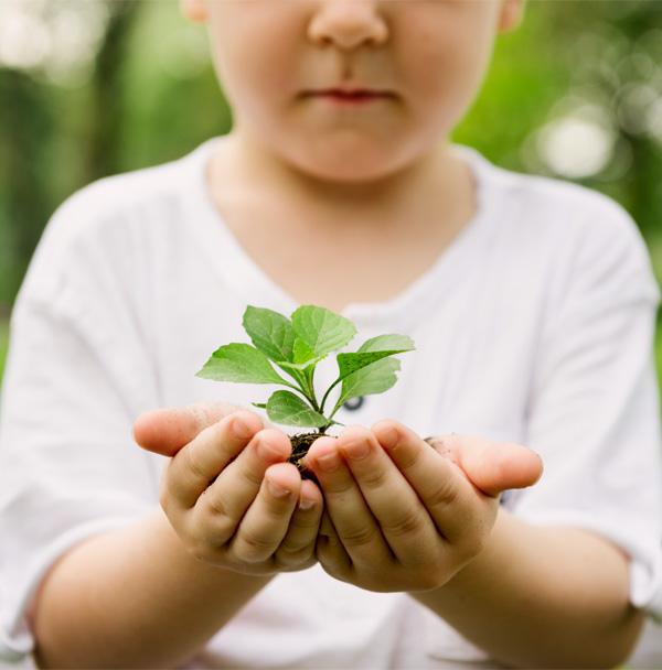 familias disciplina positiva y montessori